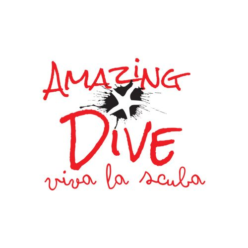 ADA partner Amazing Dive