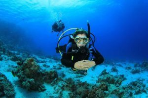 ADA Dive Career Training