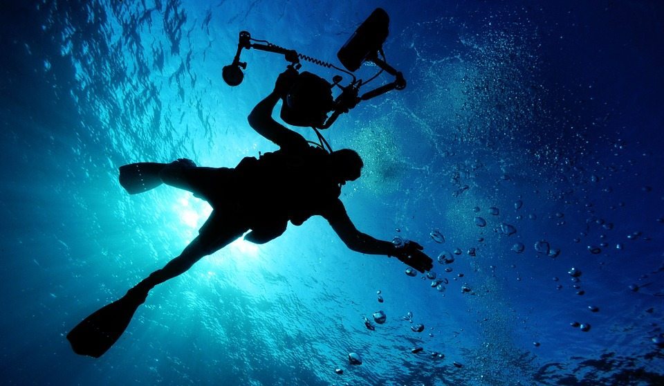 7 Specialty Courses to Level Up Your Diving Skills