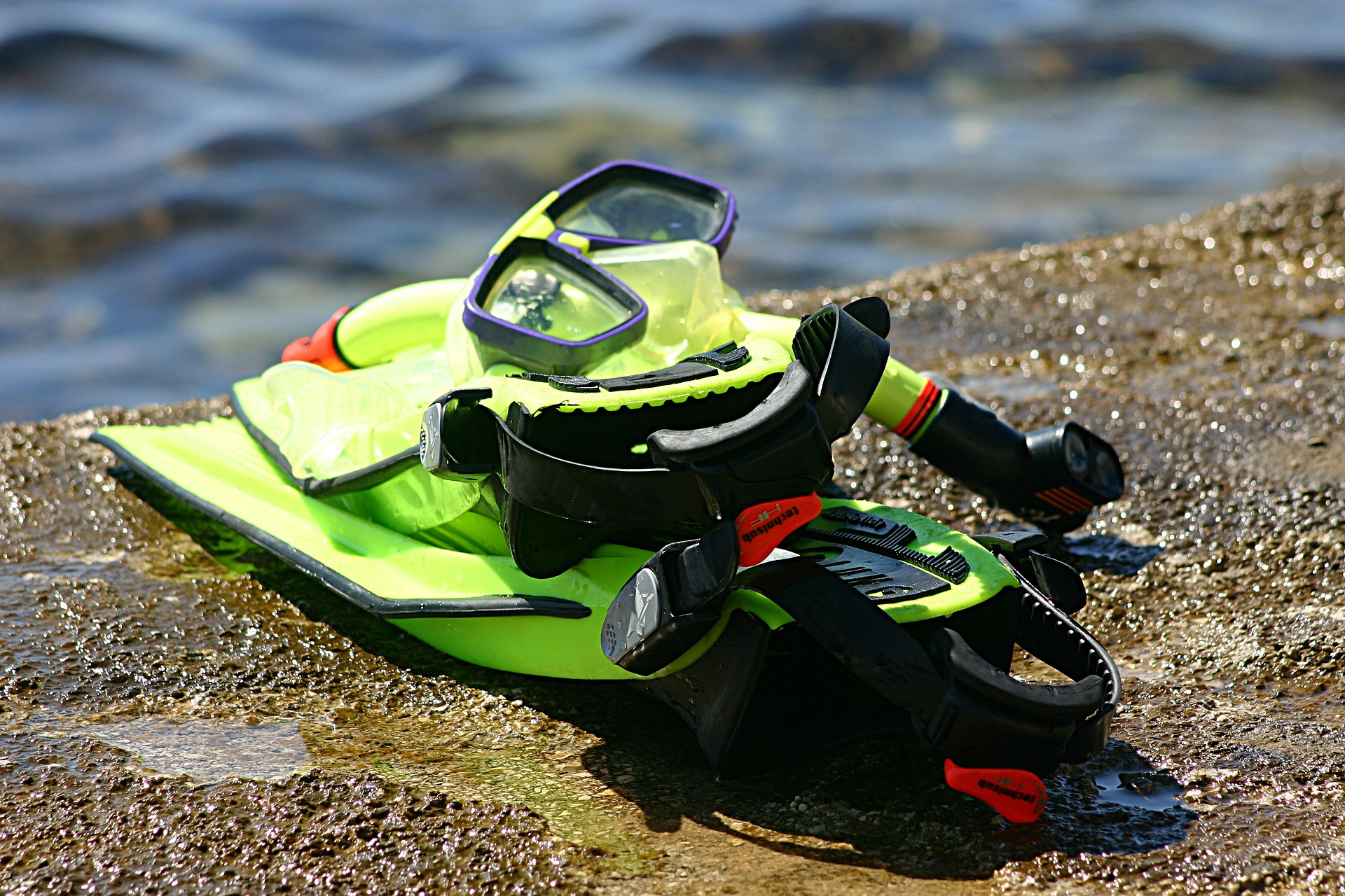 4 Diving Gears You Should Stop Renting