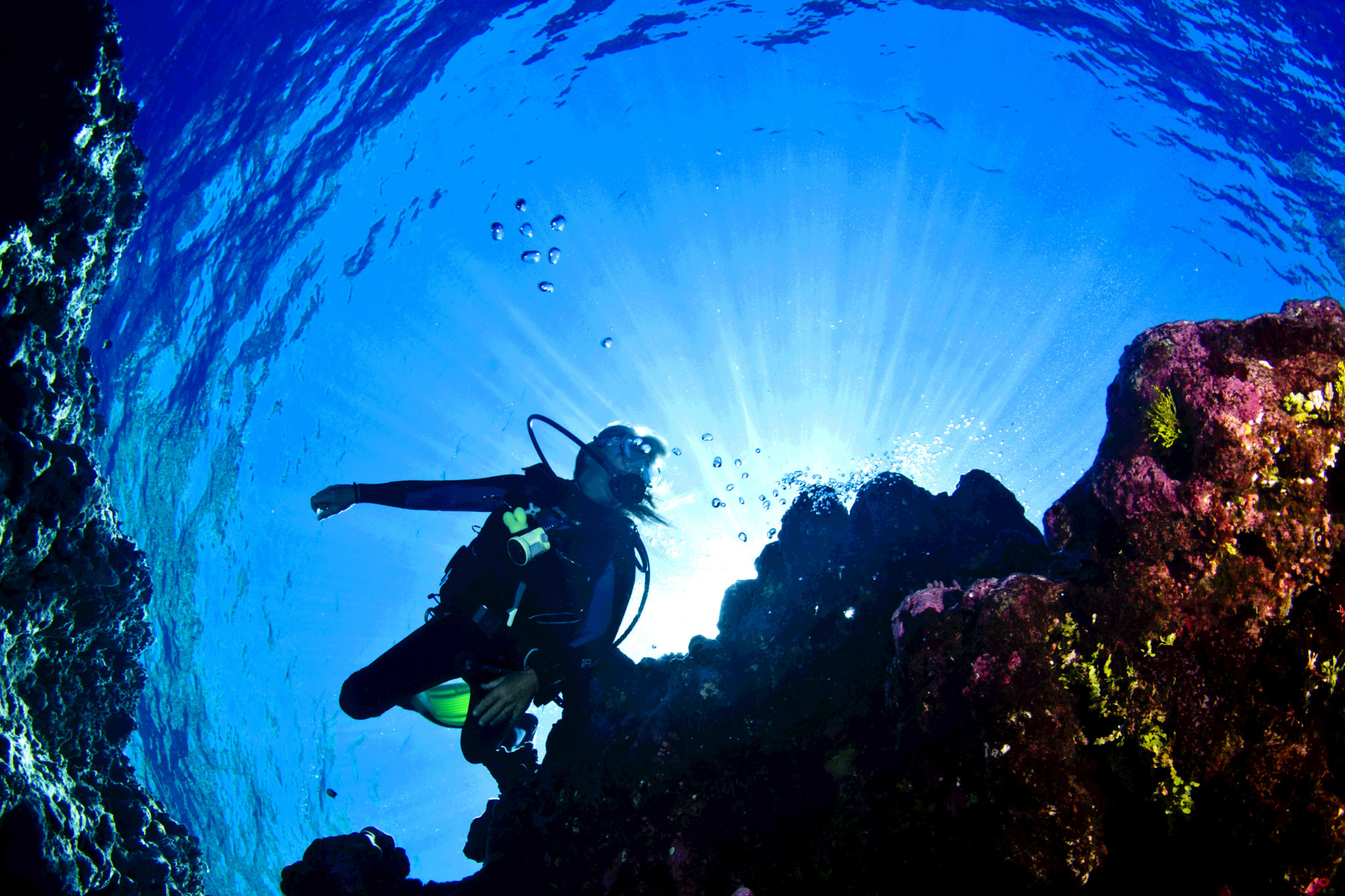 FAQ: Do You Really Need a Dive Insurance?