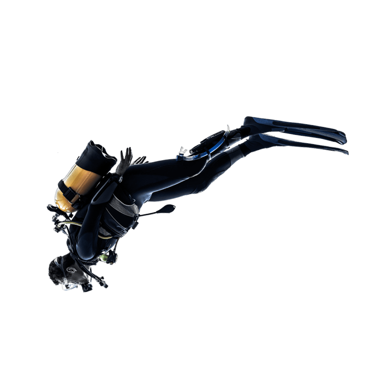 Basic course   Amazing Dive