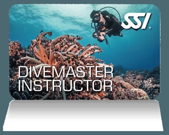 SSI Dive Master | SSI Dive Master Course | Dive Master | Professional Course | Diving Course | Amazing Dive