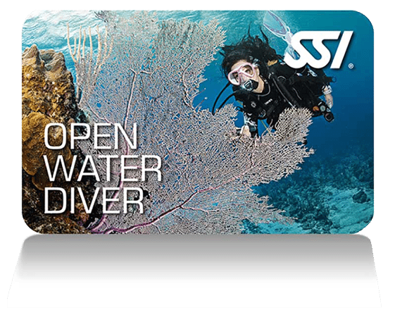 SSI Open Water Diver | SSI Open Water Diver Course | Open Water Diver | Diving Course | Diving Course | Amazing Dive