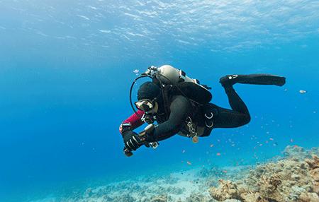 Navigation   Amazing Dive