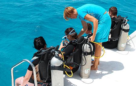 Try scuba   Amazing Dive