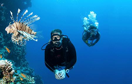 Divemaster | Amazing Dive