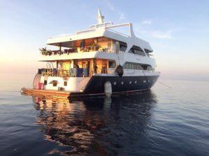 amazing-dive-maldives-mv-lob