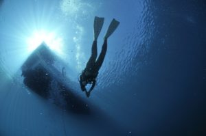 Are you brave enough for these diving specialty courses?