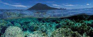 Dive Manado, Bunaken