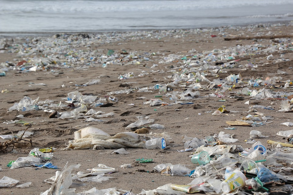 5 Elements of the Pacific Garbage Patch