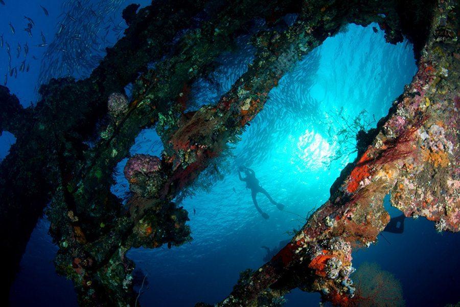巴厘岛潜水自由号沉船