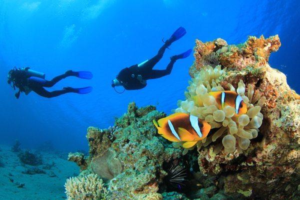 开放水域潜水员