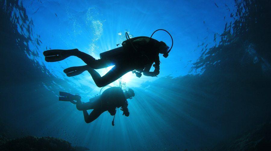 新加坡潜水潜伴