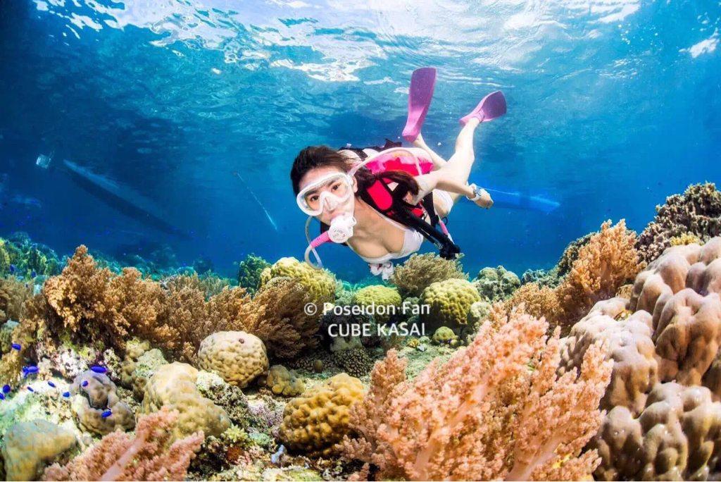 新加坡潜水美人鱼