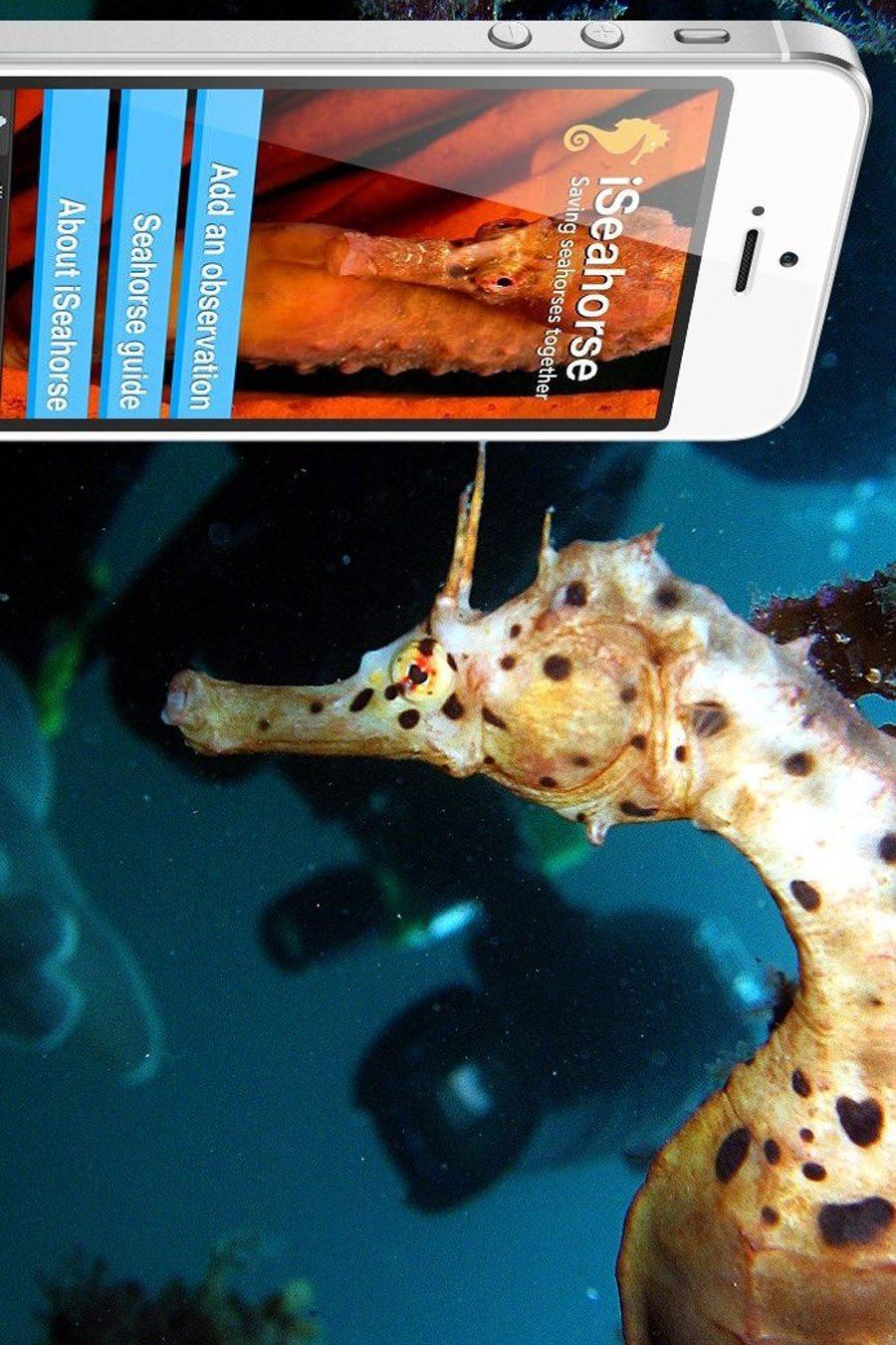 潜水环境保护