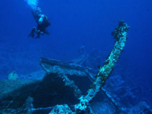 Liveaboard Diving: The Best Way to Experience the Ocean