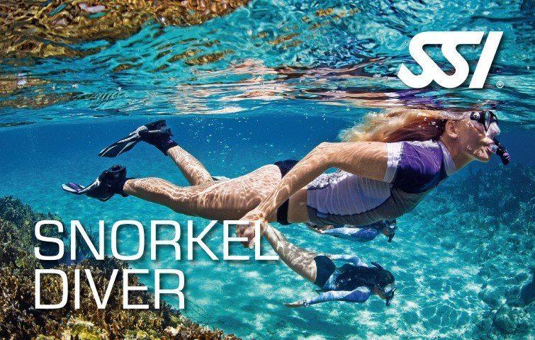 SSI Snorkel Diver Course | SSI Snorkel Diver | Snorkel Diver | Diving Course