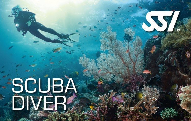 SSI Try Scuba Diving Course | SSI Scuba Diver | Scuba Diver | Diving Course