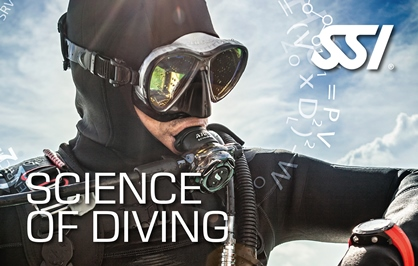 SSI Science of Diving | SSI Shark Ecology Course | SSI Science of Diving | Science of Diving | Diving Course