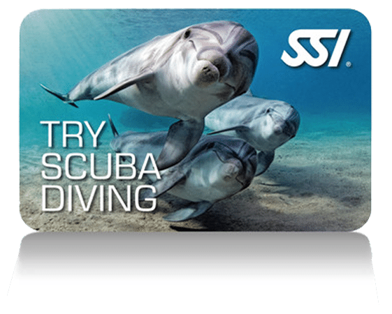 TRY-SCUBA-DIVING