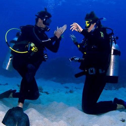 Pro-Dive