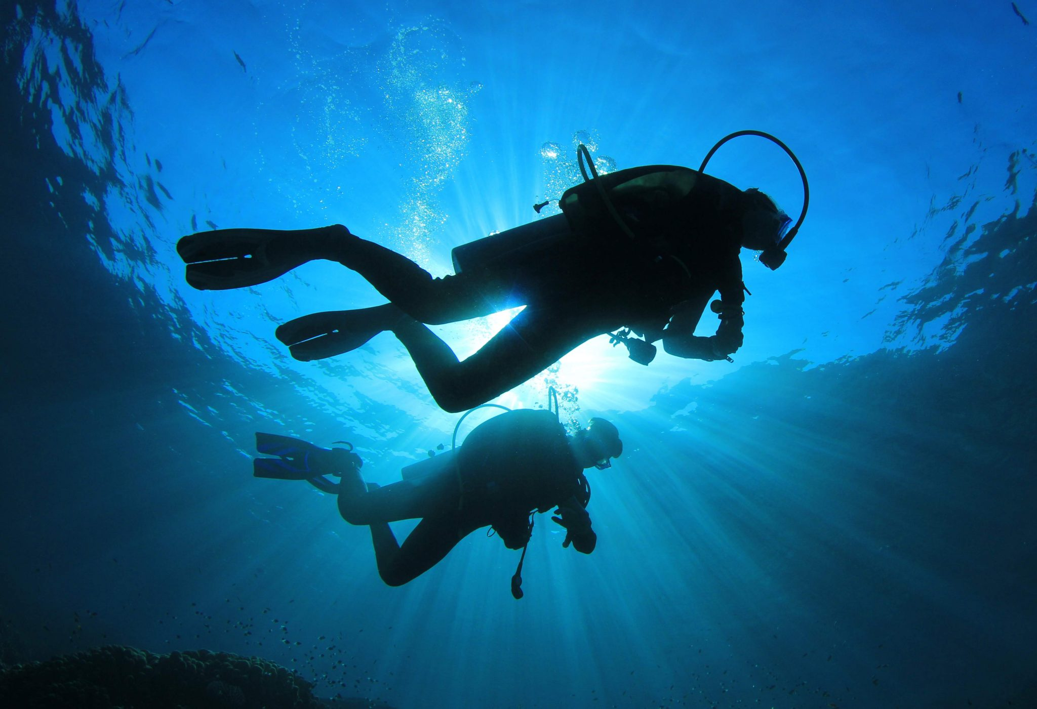 bintan-diving-is-good-for-beginners-and-unexperienced-divers-2