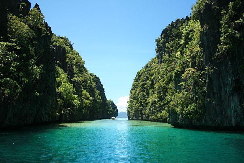 Diving Philippines: Top 5 Dive Destinations to Explore