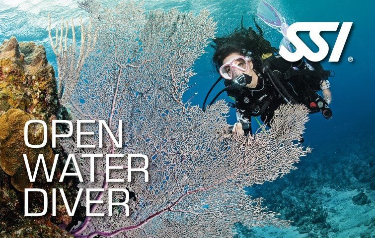 Deep Blue Scuba - Open Water Diver