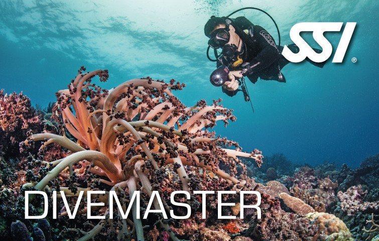 Deep Blue Scuba - Divemaster