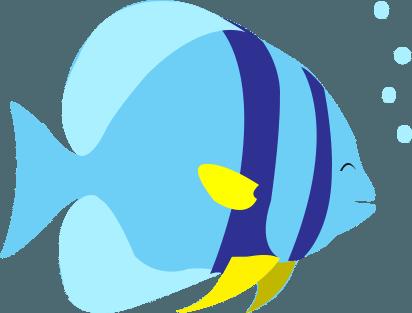 Scubahub Batfish