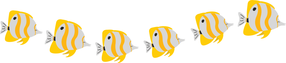 Scubahub Butterfly fishes