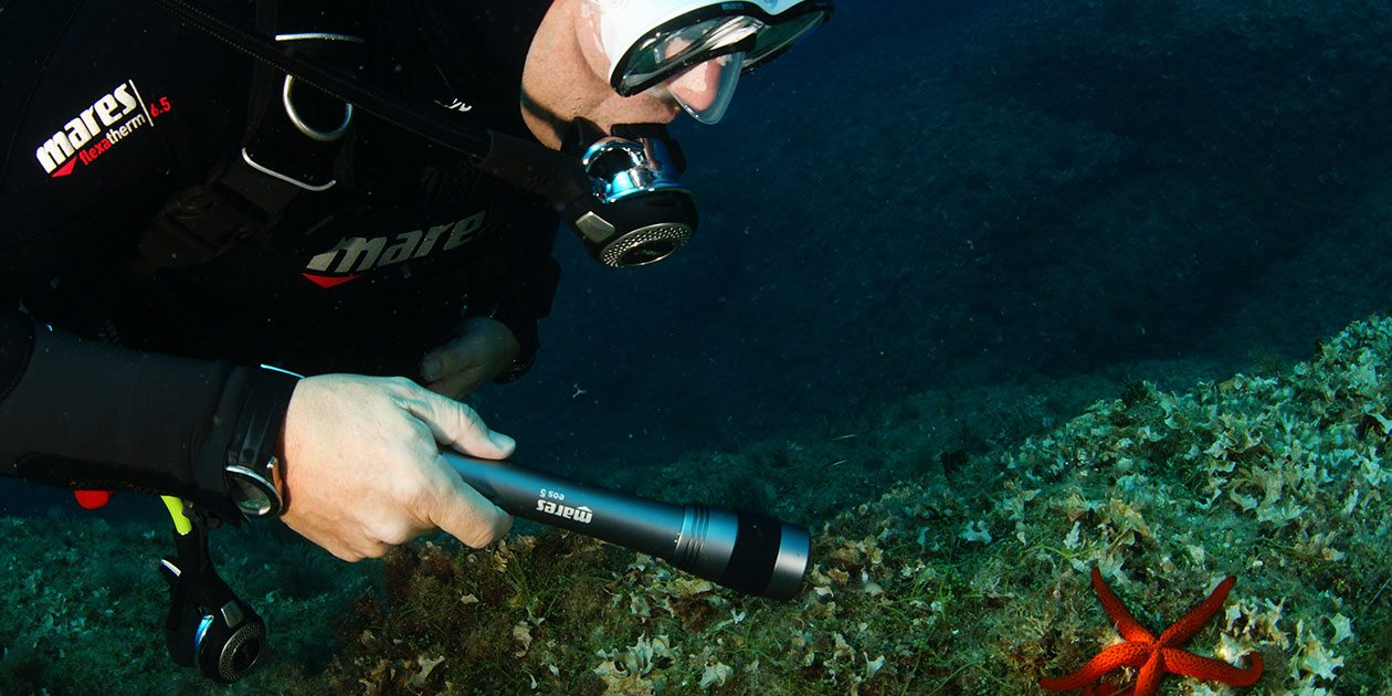How to Choose a Dive Torch