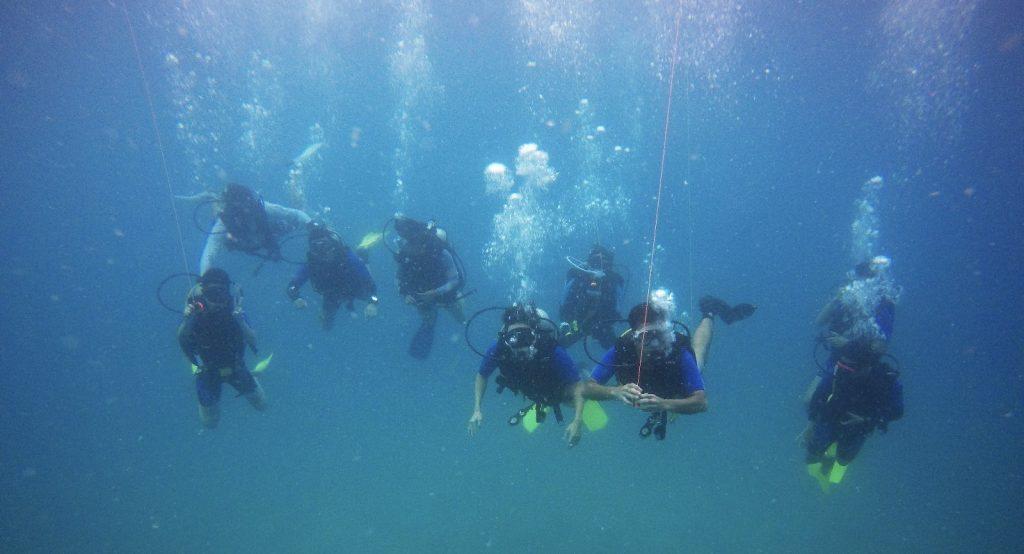 Scuba Diving Open Sea Trip - Tioman
