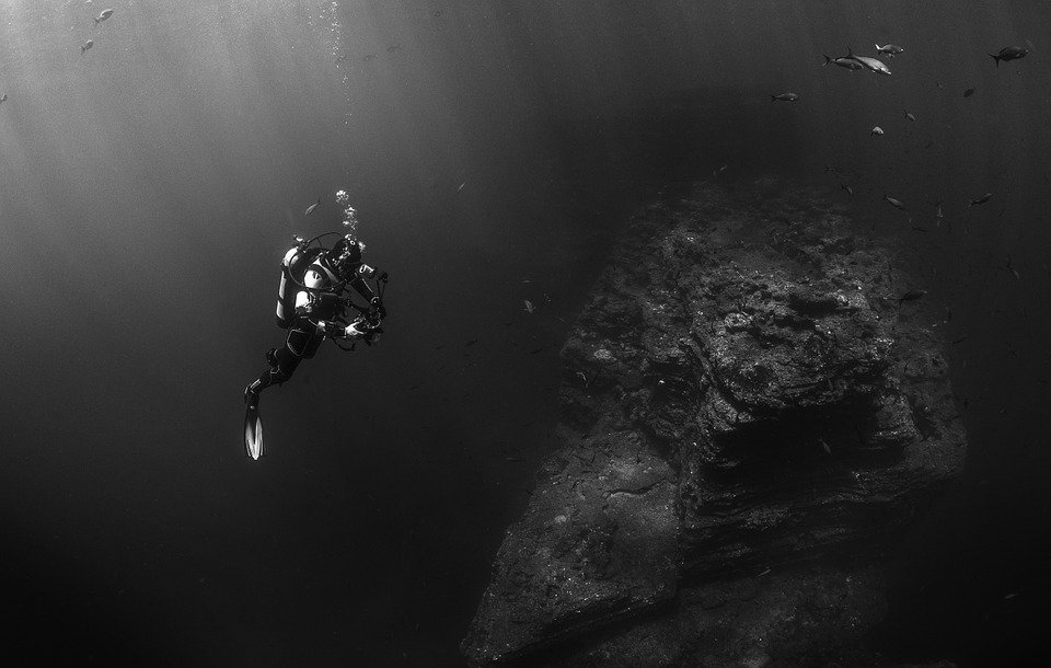 Specialty Dive Courses for the Thrill-Seekers