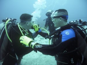 5 Legit Reasons Why You Should Not Dive
