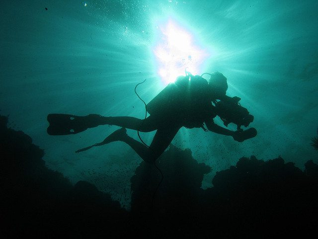 What kind of diver are you according to your zodiac sign?