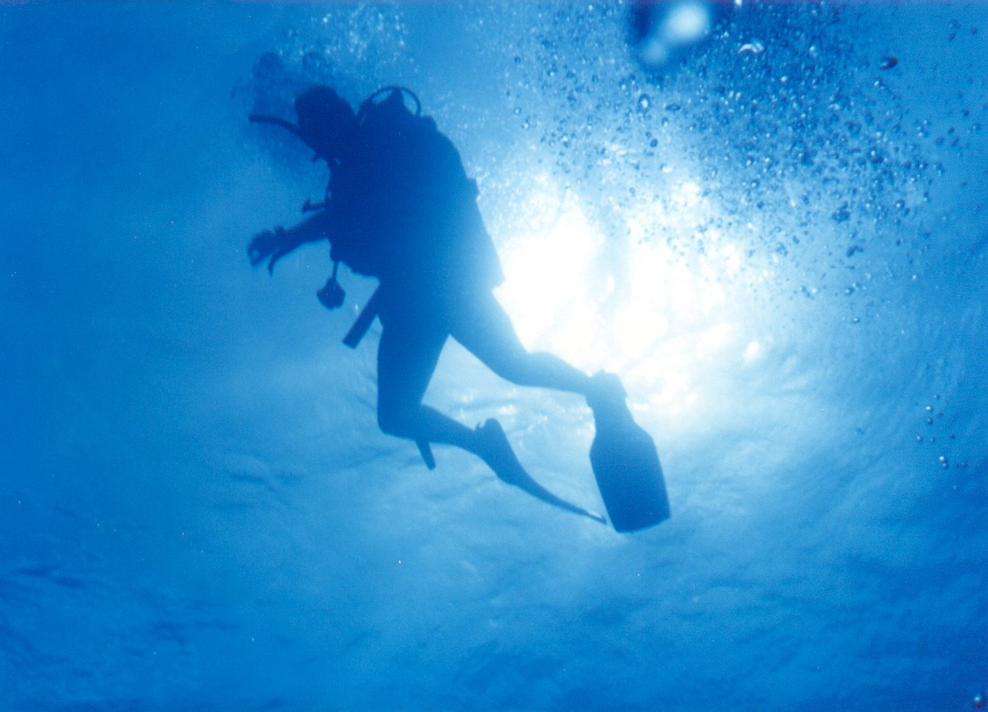 7 Perks of Being a Scuba Diver (You Should Not Miss This 2018)