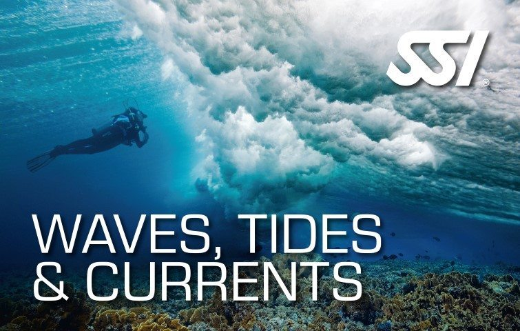 SSI Waves Tides Currents Diving | SSI Waves Tides Currents Course | Waves Tides Currents | Specialty Course | Diving Course | Eko Divers