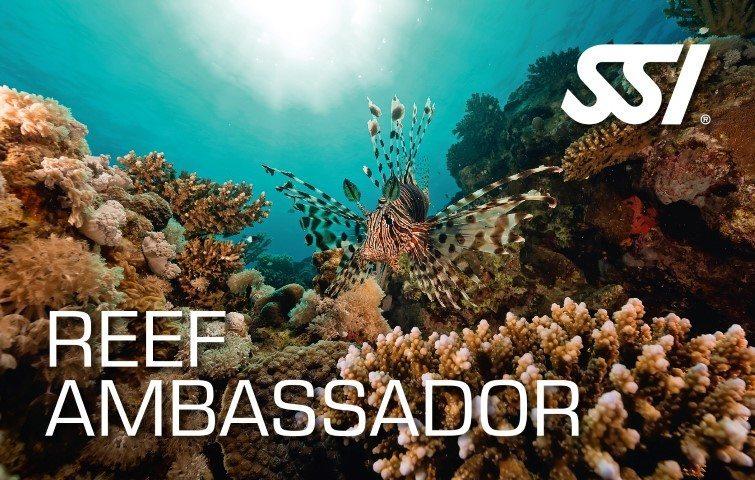SSI Reef Ambassador Course | SSI Reef Ambassador | Reef Ambassador | Diving Course | Eko Divers